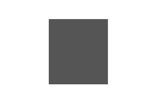 Corporate Design für BdB, Beispiel Logodesign