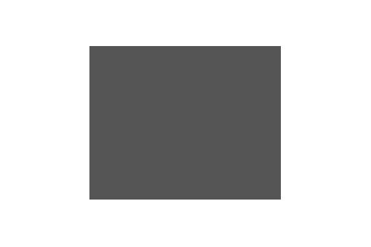 Corporate Design für elring, Beispiel Logodesign