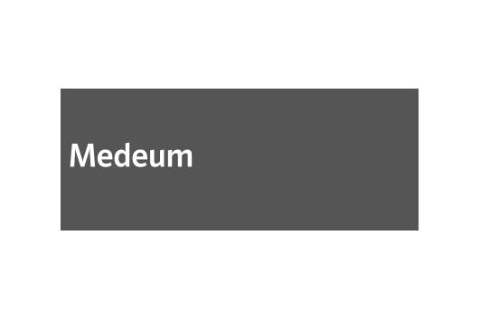 Corporate Design für Medeum, Beispiel Logodesign