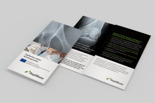 Corporate Design für Replibone, Beispiel Flyerdesign