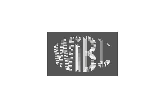 Verpackungsdesign für WiBU